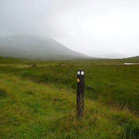 Skotland 2015